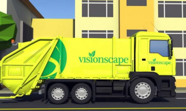 Demand For The Investigation Of The Ownership Of Visionscape Sanitation Solutions And Its Contract With The Lagos State Government